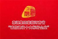 """森源集团荣获河南省""""诚信建设十大标杆企业"""""""
