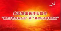 """森源集团获评长葛市""""最佳开拓创新企业""""和""""最佳社会奉献企业"""""""