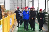 商务部欧洲司司长周晓燕 到河北宣工调研指导工作