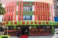 热烈祝贺云南经销商云南三联叉车有限公司隆重开业!