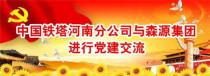 中国铁塔河南分公司与森源集团进行党建交流
