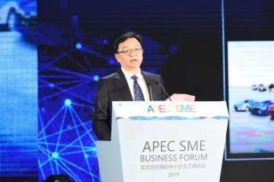 APEC中小企业工商论坛开幕 王传福:以开放创新树全球品牌