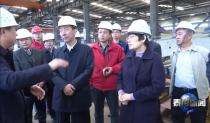 泰山区领导王爱新、张培峰莅临岳首现场调研安全生产工作