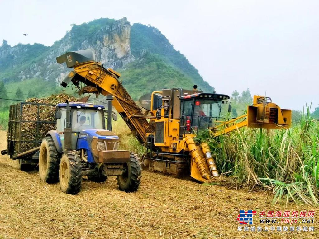 总书记检阅的重器|强劲高效 柳工助力甘蔗收获机械化