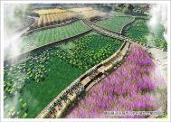 中交西筑静宁县泾河、葫芦河流域水环境综合整治项目顺利通过验收